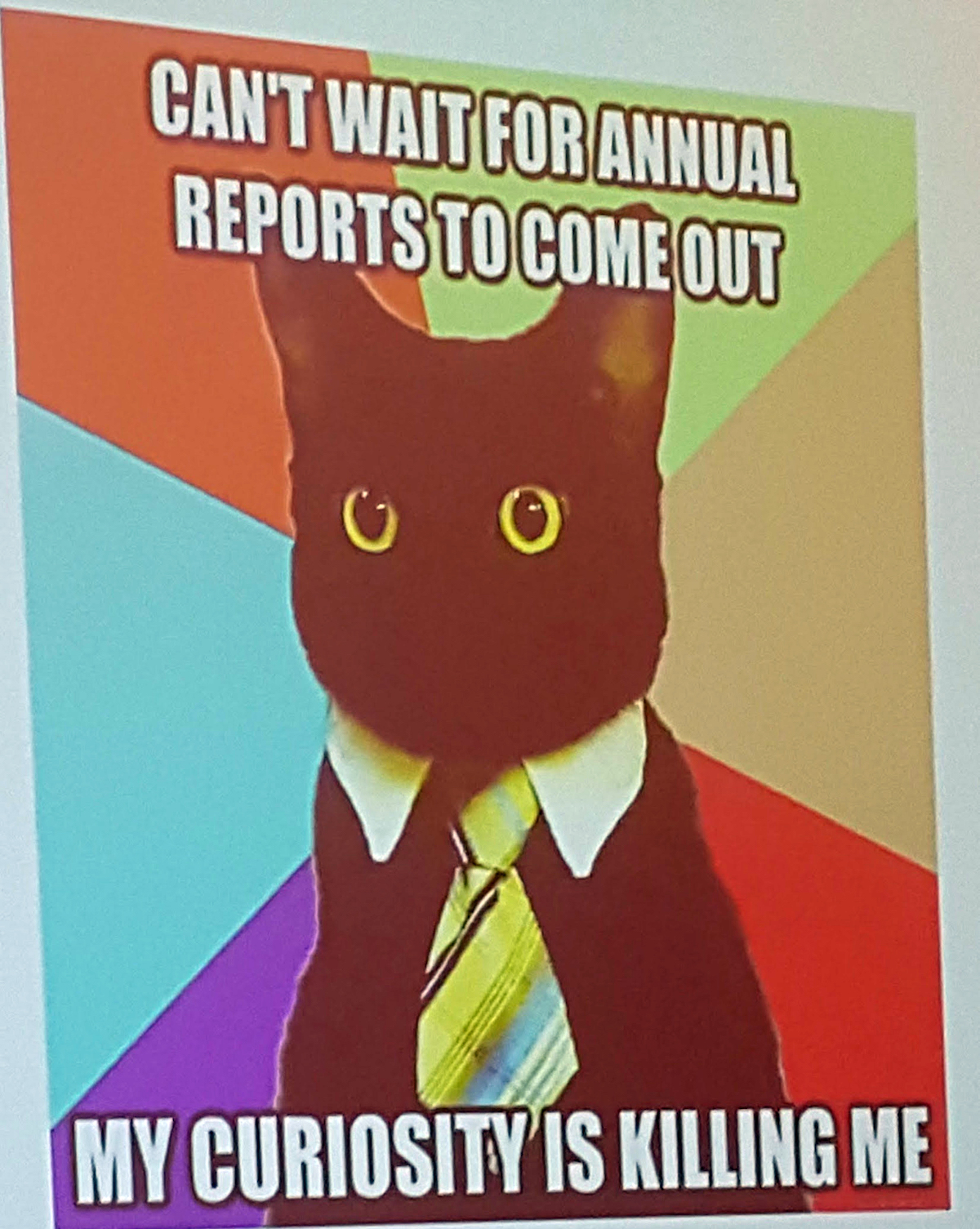 Every talk needs at least one cat image